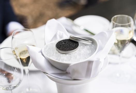 Caviar Oona